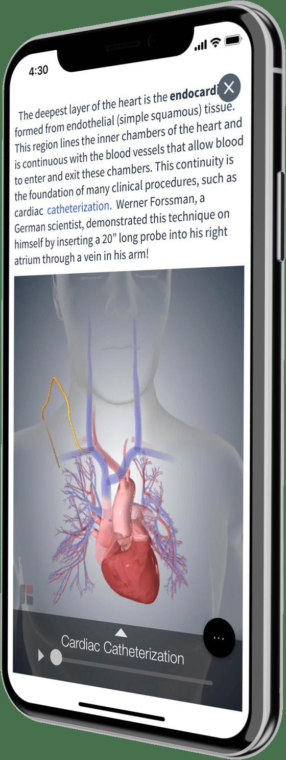 Iphones displaying Top Hat app
