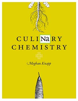 Culinary Chemistry book cover