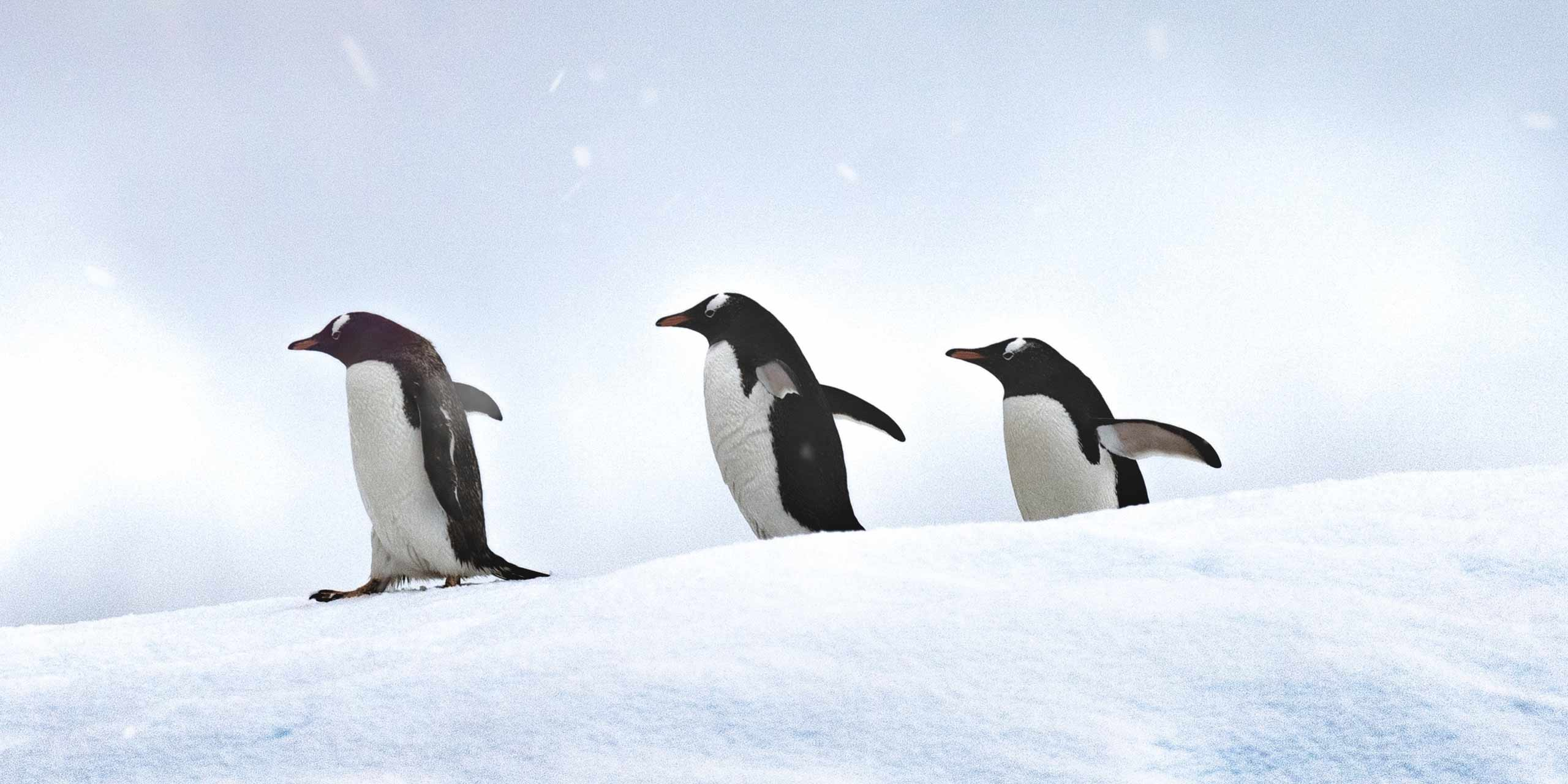 10 Classroom Icebreakers For College Professors
