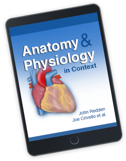 Top Hat Anatomy & Physiology Textbook | Top Hat